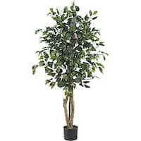 Ficus Silk 4-foot Tree
