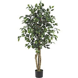 Ficus Silk 4-foot Tree