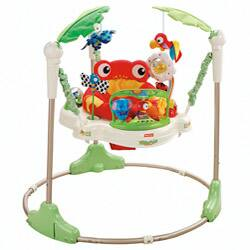Fisher-Price Rainforest Jumperoo|https://ak1.ostkcdn.com/images/products/P13048580a.jpg?impolicy=medium