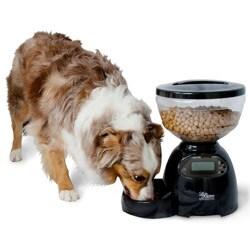Aspen Pet LeBistro 10-pound Portion Control Pet Feeder