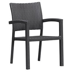 Ashland Outdoor Black Chair (Set of 2)