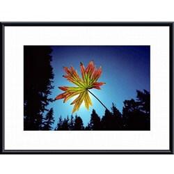 John K. Nakata 'Leaf' Framed Art Print