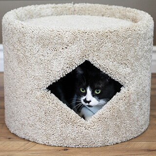 New Cat Condos Carpeted Wood Cat House