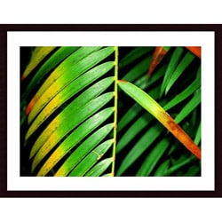 John K. Nakata 'Colorful Palm Leaf' Wood Framed Art Print