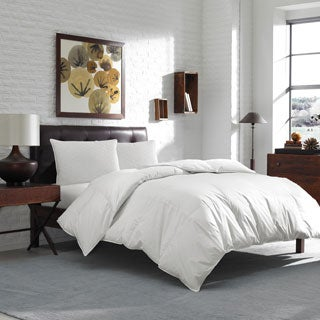 Eddie Bauer 600 Fill Power Warm White Goose Down Comforter