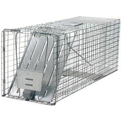 Havahart Animal Traps Single Door Raccoon Trap|https://ak1.ostkcdn.com/images/products/P13958912.jpg?_ostk_perf_=percv&impolicy=medium