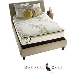 Shop Simmons Natural Care Fruit Hill Plush Queen Size
