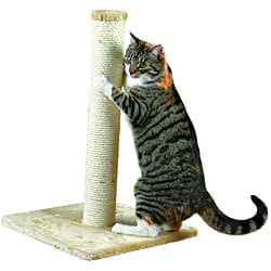 Trixie Pet Products Parla Cat Scratching Post|https://ak1.ostkcdn.com/images/products/P14260991.jpg?impolicy=medium