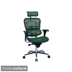 Ergohuman High Back Mesh Swivel Chair with Chrome Frame
