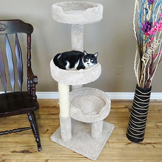 new cat condos 50 inch premier kitty pad cat tree and scratcher  3 options cat furniture for less   overstock    rh   overstock