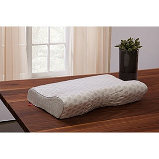 Danican Cool Pointe Suscipio Memory Foam Contour Pillow