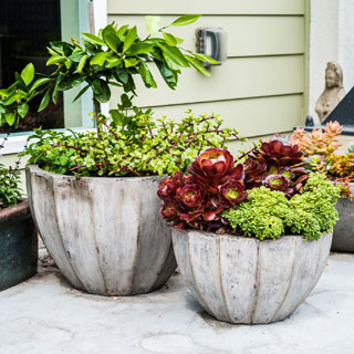 Eco-concrete Nau Planter  , Handmade in Vietnam