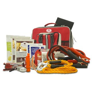 Wise Company Emergency Auto Kit