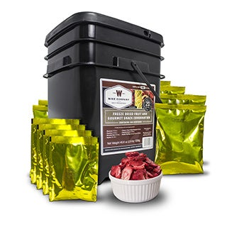 Wise Company 120 Servings of Freeze Dried Fruit and Snack Kit