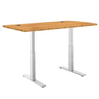 "ActiveDesk Standing Desk with Electric Adjustable Height 28 - 46 inches, Grey Frame - Ergo Table Top size 53"" x 30"""