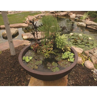 Patio Water Garden Planter