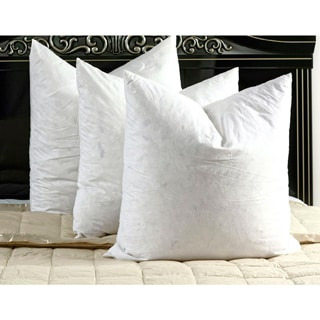 White Cotton Down and Feather Euro Square Pillow (Set of 2)