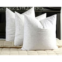 White Cotton Down And Feather Euro Square Pillow Set Of 2