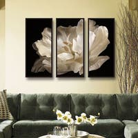 ArtWall Cora Niele's White Tulip 3-piece Floater Framed Canvas Set