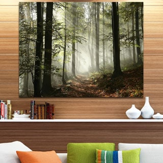 Light in Dense Fall Forest with Fog Landscape Canvas Art Print