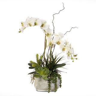 Real Touch Phalaenopsis Silk Orchid Arrangement with Succulents in a Stone Pot