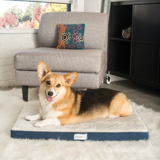 Simmons Beautyrest Thera Bed Orthopedic Memory Foam Dog Bed
