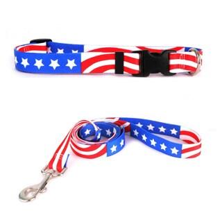 Yellow Dog Design Americana Pet Standard Collar & Lead Set