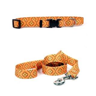 Yellow Dog Design Cleo Orange Pet Standard Collar & Lead Set