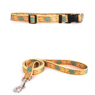 Yellow Dog Design Rose/Teal Leather Pet Standard Collar & Lead Set