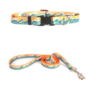 Yellow Dog Design Mystic Waves Pet Standard Collar and Lead Set