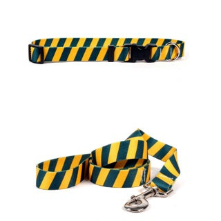 Yellow Dog Design Team Spirit Pet Standard Collar and Lead Set