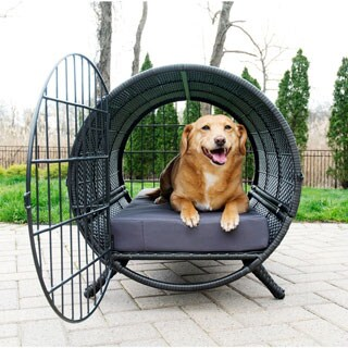 Rattan Cylinder Pet Crate - Indoor/Outdoor - N/A