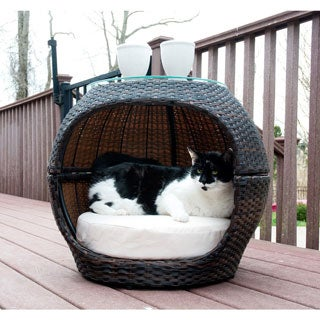 Rattan Hide-Away Pet Bed - Indoor/Outdoor - N/A