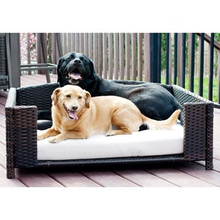 Indoor/ Outdoor Rattan Wicker Rectangular Dark Brown Pet Sofa with Ivory Cushion