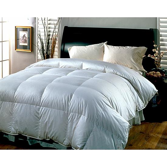 Supreme 300 Thread Count All Season Down Blend Comforter