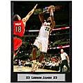 Lebron James 9x12 Photo Plaque