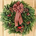 Varigated Stewart 24-inch Fresh-cut Maine Balsam Wreath