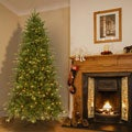 7.5' Pre-lit Deluxe Artificial Christmas Tree with Memory Wire