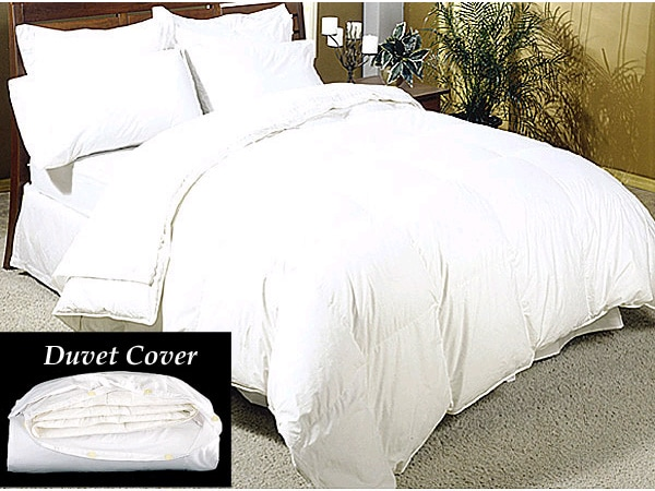 Down Comforter and Duvet Cover