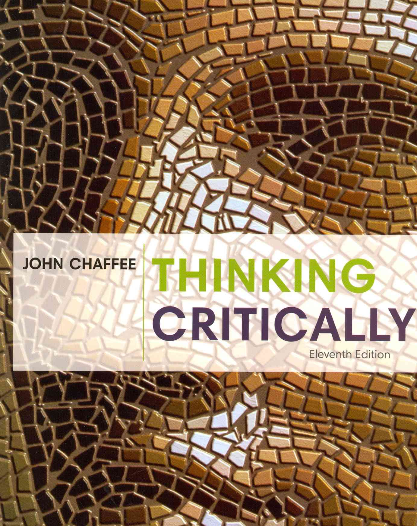 thinking critically about ethical issues chapter summaries