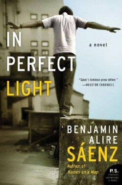 In Perfect Light (Paperback)