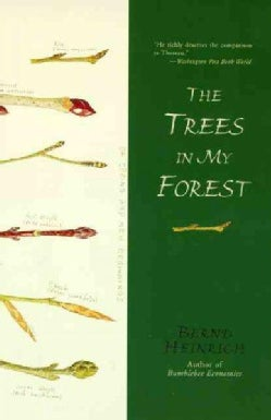 The Trees in My Forest (Paperback)