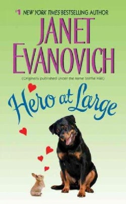 Hero at Large (Paperback)
