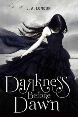 Darkness Before Dawn (Paperback)