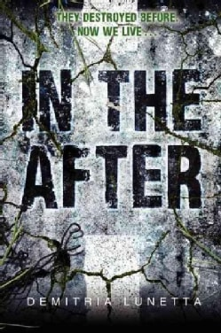 In the After (Paperback)
