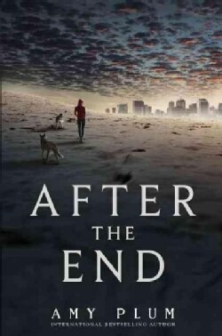 After the End (Hardcover)