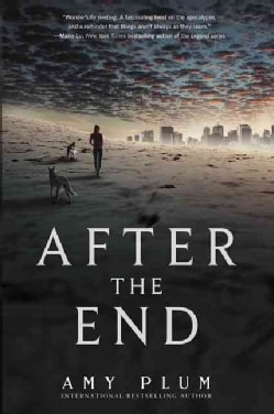 After the End (Paperback)