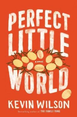 Perfect Little World (Hardcover)