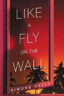 Like a Fly on the Wall (Paperback)