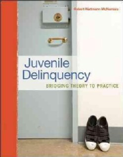 Juvenile Delinquency: Bridging Theory to Practice (Paperback)